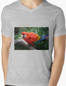 Scarlet Macaw Mens V-Neck T-Shirt