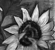 Oil Sunflower 2 Black and White  by derekmccrea