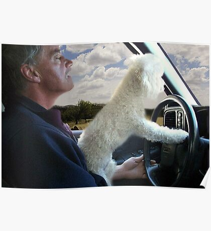 """☸•°*""""˜SIT BACK AND RELAX - LET ME SHOW U HOW TO DRIVE CANINE STYLE--INCLUDED IS MY WRITTEN POEM""""*°•☸ Poster"""