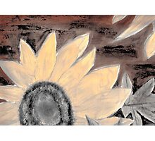 Oil Sunflower Sepia Painting poster print Photographic Print