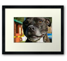 CHEESE!!!!! Framed Print