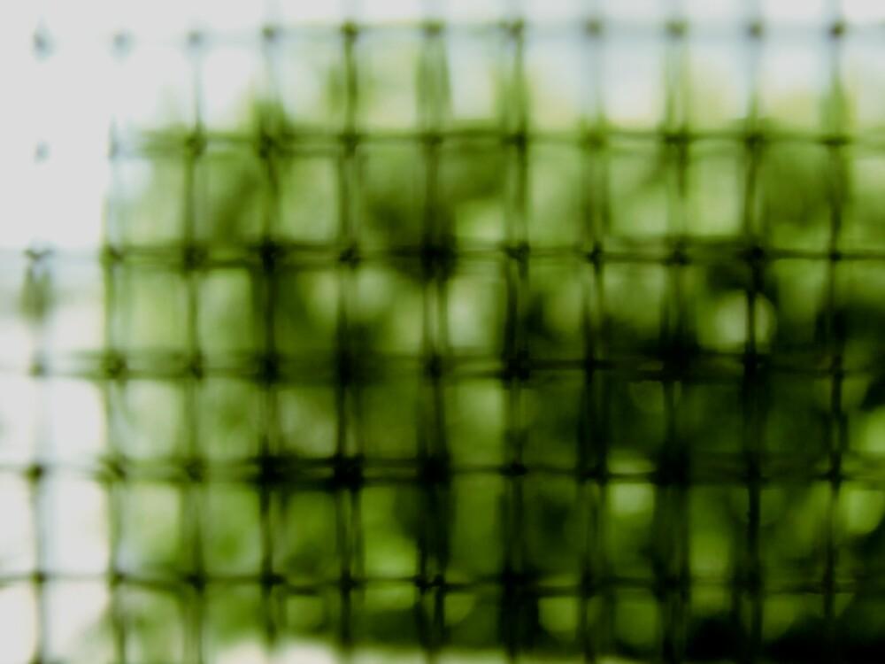Garden Cell by diongillard
