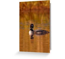 On Golden Pond - Common Loon Greeting Card