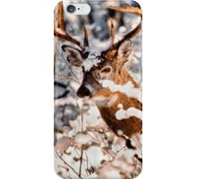Winter Wonder 2 iPhone Case/Skin