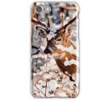 Winter Wonder 2 iPhone Case/Skin
