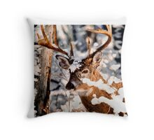 Winter Wonder 2 Throw Pillow