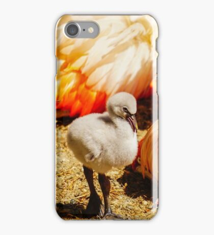 Flamingo and Baby iPhone Case/Skin