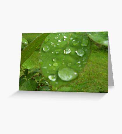 Refresh us Like Rain Greeting Card