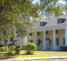 Stephen Foster Museum by designingjudy