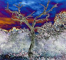 DEAD TREE by Marya Humble