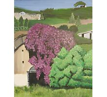 Rural Italian landscape painting Photographic Print