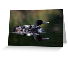 Reflective Loon - Common Loon Greeting Card