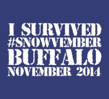 Cool 'I survived #snowvember Buffalo November 2014' Snowstorm T-Shirt and Accessories by Albany Retro