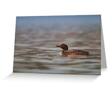 Common Loon - Wilson Lake Greeting Card
