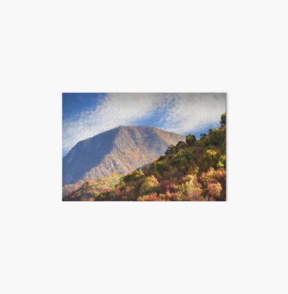 mountain nature Art Board