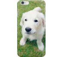 Golden retriever dog puppy looking up iPhone Case/Skin