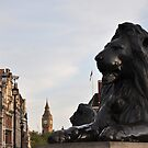 Lions Roar - Trafalgar Square, London by Hilda Rytteke