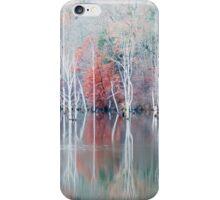 White Trees in Fog iPhone Case/Skin