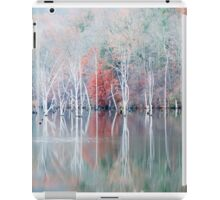 White Trees in Fog iPad Case/Skin