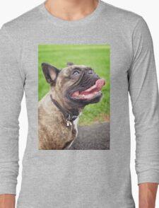 Cute French bulldog puppy, dog looking up 2 Long Sleeve T-Shirt