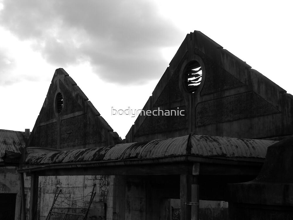 the pyramids by bodymechanic