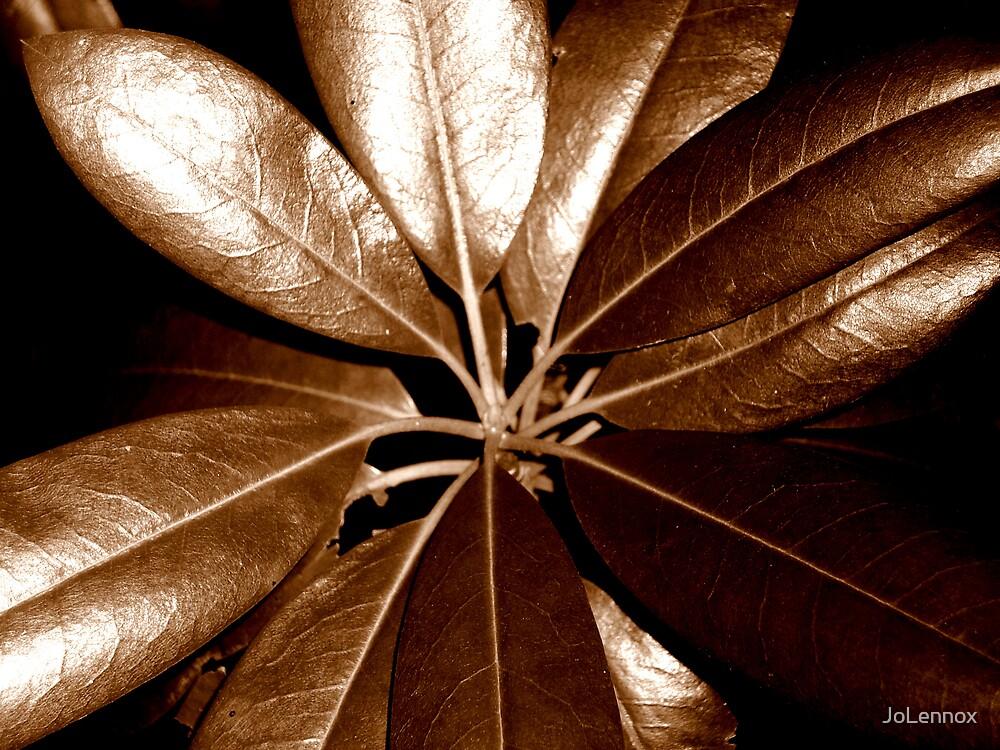 Bronzed by JoLennox