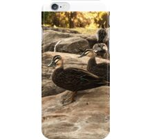 Ducks All In A Row iPhone Case/Skin