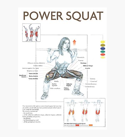 Power Squat - Exercise Muscle Diagram Photographic Print