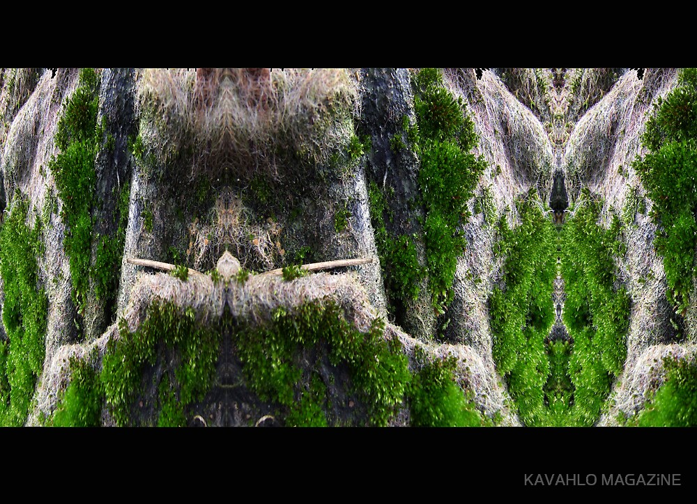 RIGHT. DOWN TO THE WOODS. by KAVAHLO MAGAZiNE