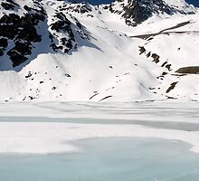 Frozen by Walter Quirtmair
