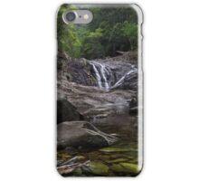 Artists Cascades iPhone Case/Skin