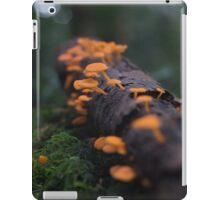 Rainforest Treats iPad Case/Skin