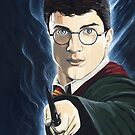 Harry Potter by Andy  Housham