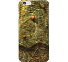 Hermetic Work iPhone Case/Skin