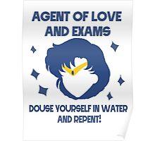 Sailor Mercury! Agent of Love! Poster