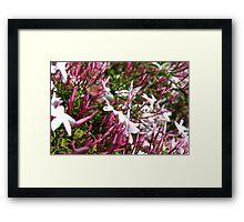 Bees 'n' Flowers Framed Print
