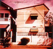 Home by Paula Birch