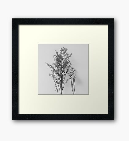 Aged x Light Framed Print