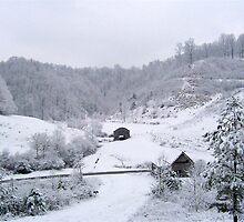 Snow  by Jason Helton