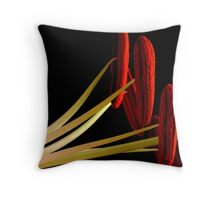 Ready for a Close-up Throw Pillow