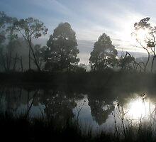 Misty Morning by hopesarah