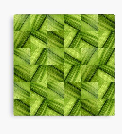 Leaf Collage Canvas Print