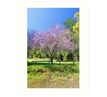 Pink Cherry Blossom Tree Art Print