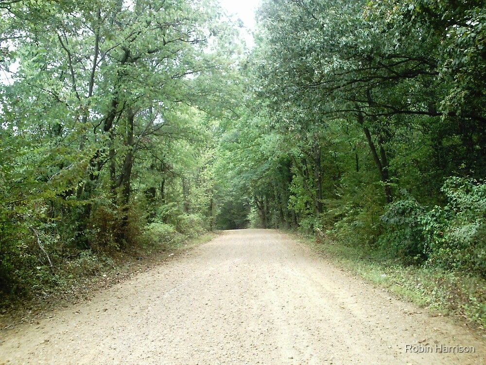 country road II by Robin Harrison