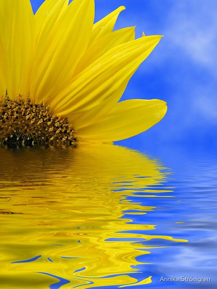 Sunflower in water by Annika Strömgren