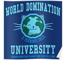 World Domination University Poster