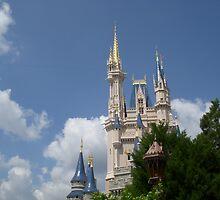 Cinderella's castle by candid