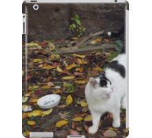 Cat Portrait, Brunswick Community Garden, Jersey City iPad Case/Skin