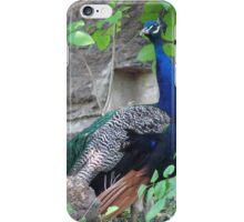 Peacock iPhone Case/Skin