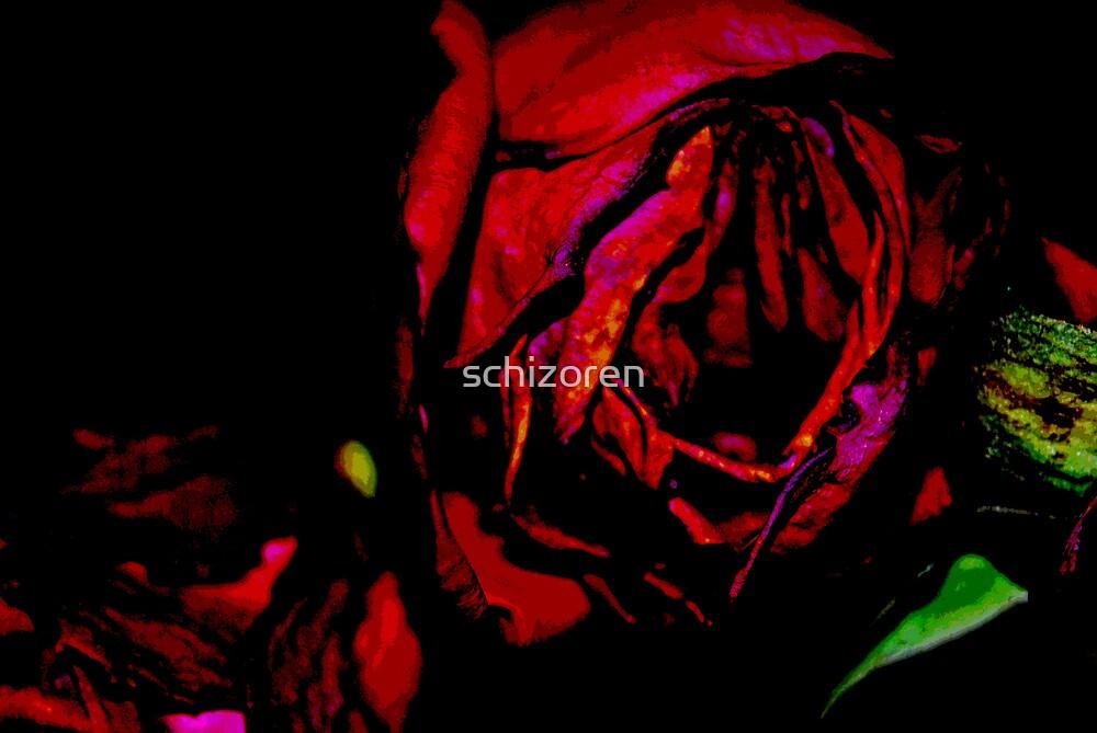 Untitled by schizoren